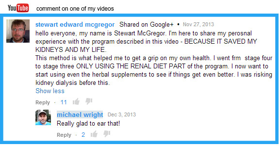 youtube comment kidney video 2