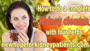 kidney cleanse tea